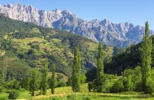 Escapada Picos de Europa: 1 o 2 noches para 2