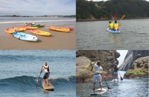 Alquiler o ruta guiada de 3h. en kayak o paddle surf. Regala o disfruta del deporte