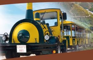 Ribeira Sacra: Menú, tren turístico y visita a bodega